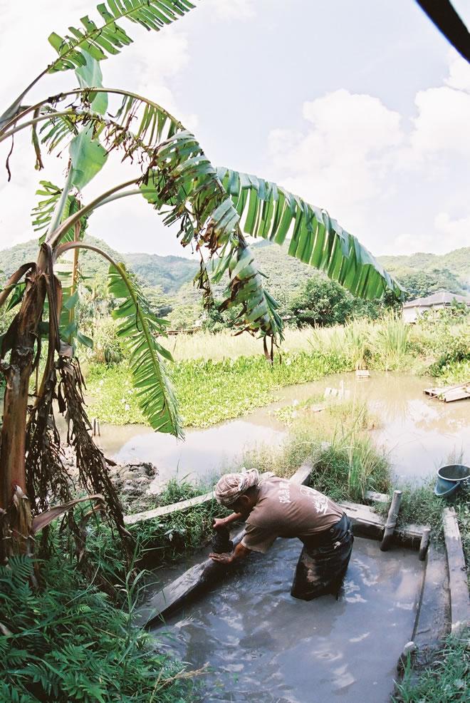 奄美大島の大自然のなかで、泥染めが好きでたまらない!!
